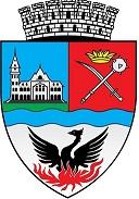Primaria Buzau